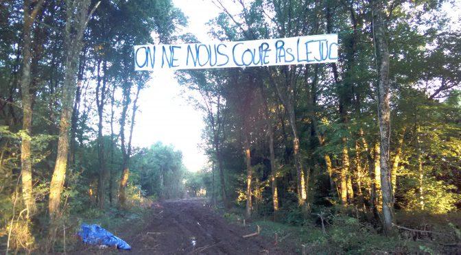Francja: Wołanie o pomoc z okupowanego lasu w Bure