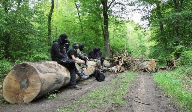 Niemcy: awantura w lesie Hambach