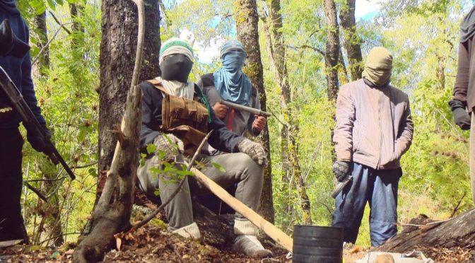 Radykalna Walka Mapuczów*: Dziedziczna walka z Państwem i Kapitałem