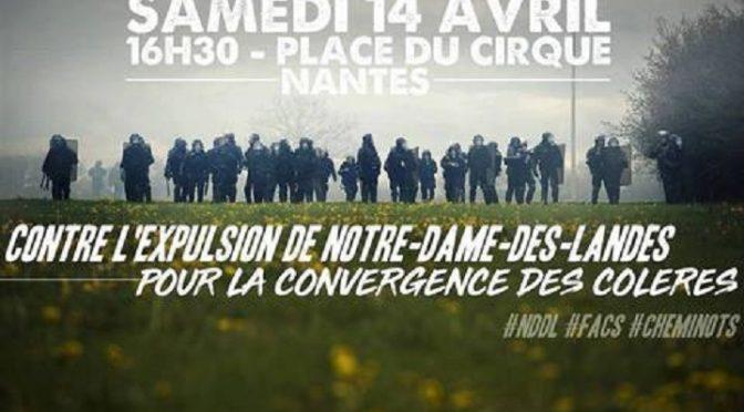 Komunikat ZAD: Po 3 dniach ewikcji, czy są gotowi by zabić, żeby zapobiec kolektywnym działaniom?
