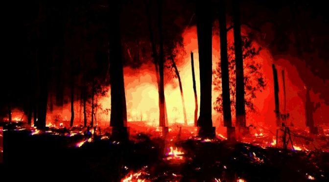 Narrm (Melbourne), tak zwana Australia: 5 afirmacji powstałych w Ogniu i Dymie