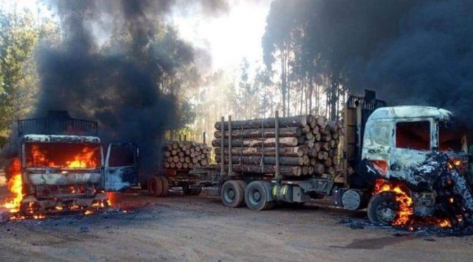 Temuco, Chile: Skoordynowany atak na 26 maszyn wycinkowych